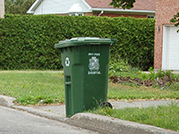 Recycling and Recycling Bins