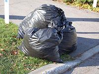 Collecte des déchets domestiques