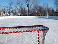 Arenas and Skating Rinks