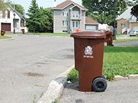 Organic Waste Pickup